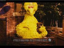 Big Bird taken from President Obama's website