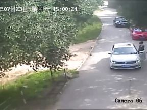 A Siberian tiger attacks a woman at a safari park in Beijing