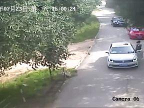 A Siberian tiger attacks a woman at a safari park in Beijing