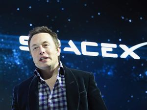 Scramble For Old Book After Elon Musk Tip