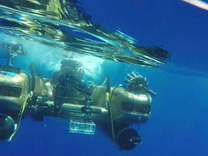 The Five Key Threats Facing Depths Of The Sea