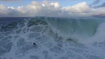 Would you surf a 100ft wave?