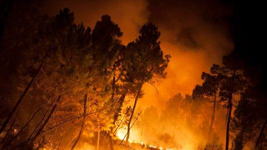 A wildfire blazes in Torneros de Jamuz near Leon