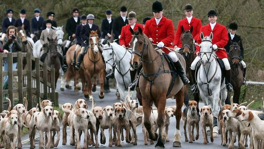 Riders and hounds from the Avon Vale Hunt arrive for their traditional Boxing Day hunt, on December 26, 2012 in Lacock, England.