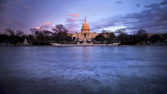 A view of the US Capitol in Washington.