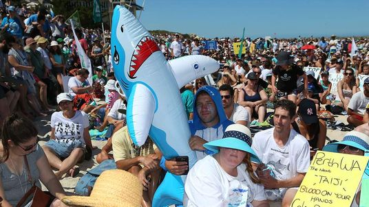 Shark cull protest