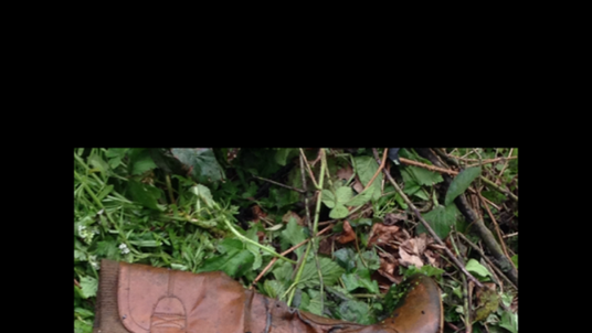 One of Sian O'Callaghan's boots found in pond