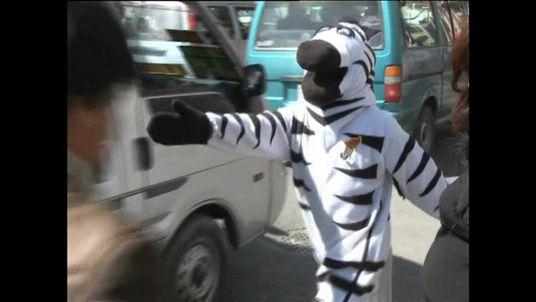 A 'traffic zebra' on patrol in La Paz, Bolivia