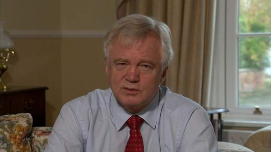 David Davis, the former shadow home secretary