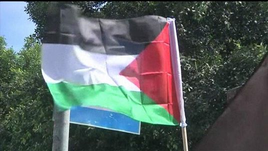 Palestinian flag fluttering in the wind