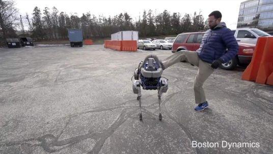 Boston Dynamics Robert Dog