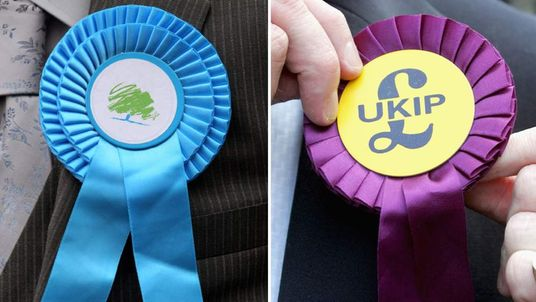 Conservative and UKIP rosettes