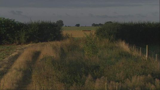 ocation of search for a lion believed to be at large in Essex