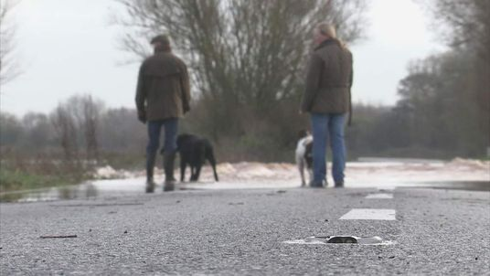 Dog walkers look at flood water