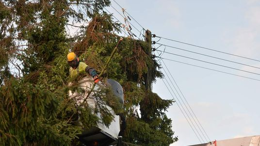 Workers remove fallen trees from powerlines in the village of Grafty Green in Kent
