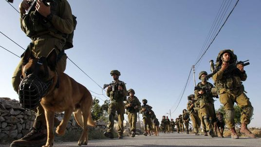 Israeli troops and dogs involved in search for kidnapped teenagers