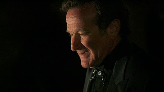 Actor Robin Williams In 2007
