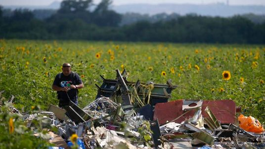 A Malaysian air crash investigator inspects the crash site of Malaysia Airlines Flight MH17, near the village of Rozsypne, Donetsk region