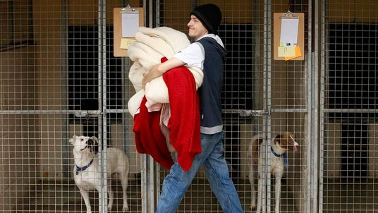 A volunteer carries donated bedding to the kennels of dogs rescued from a fire at Manchester Dogs' Home, at their temporary home at Cheshire Dogs' Home near Warrington