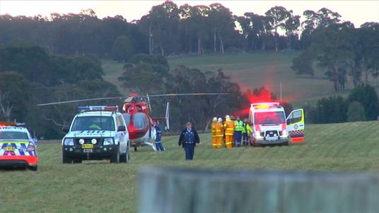 Emergency services attend an airfield after a passenger tries to grab controls