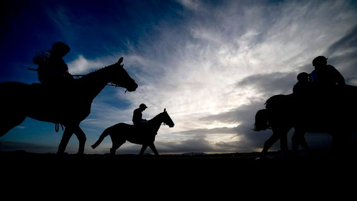 Horses Heading To Track For Final Hereford Races