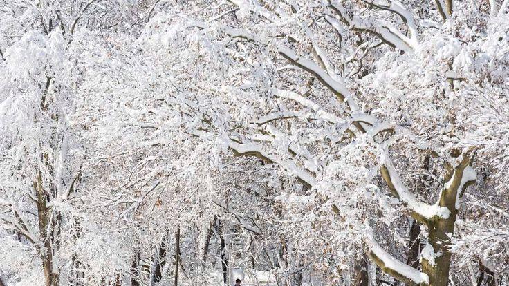 Major snow storm in Madison, Wisconsin