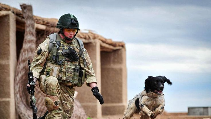 Lance Corporal Liam Tasker And Military Working Dog Theo