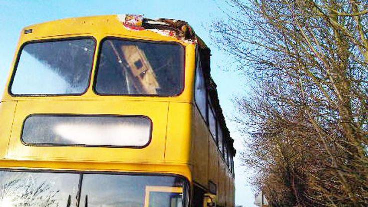 Hedgetrimmer cuts bus