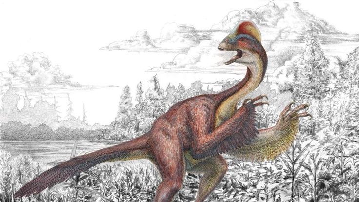 Dinosaur dubbed chicken from hell revealed
