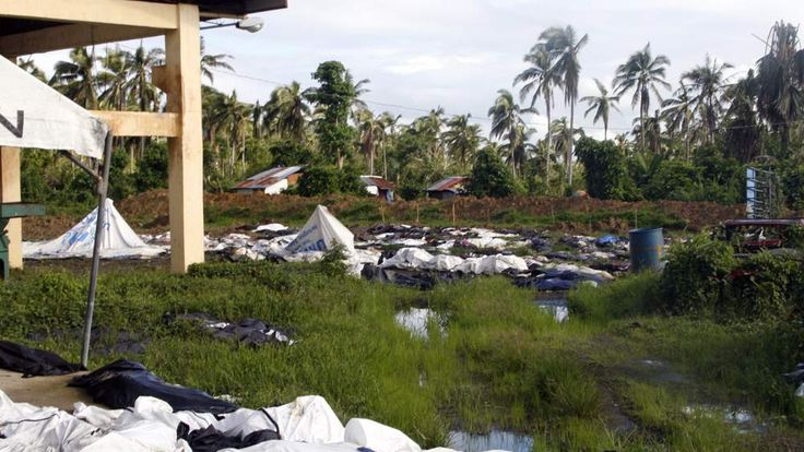 Body bags containing the rotting remains of typhoon victims are pictured on the premises of the Health Center of Barangay San Isidro Tacloban