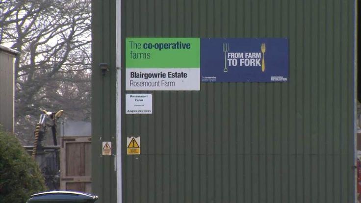 Entrance To A Co-op Farm Blairgowrie