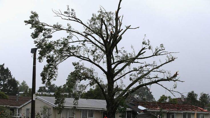 Tornado Hits West Auckland