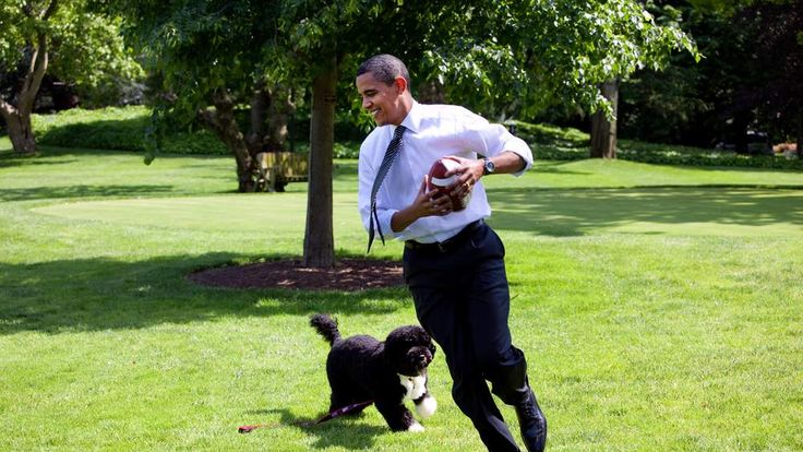 President Barack Obama with the family dog Bo on the South Lawn of the White House
