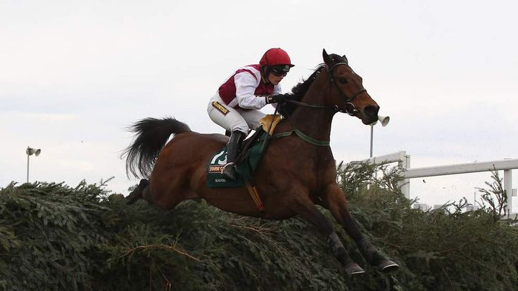 Seabass ridden by Katie Walsh at the Grand National 2012