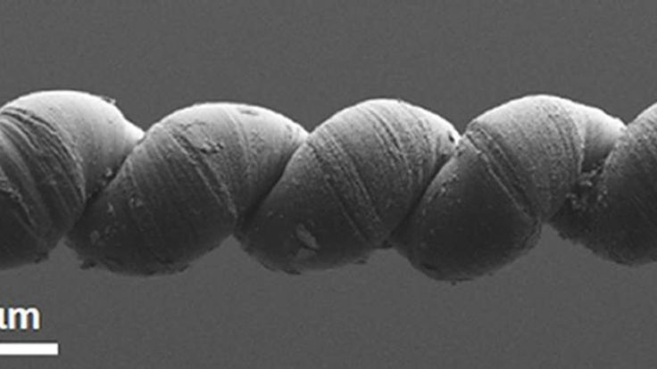 Electron microscope image of a coiled carbon nanotube yarn used to create artificial muscle