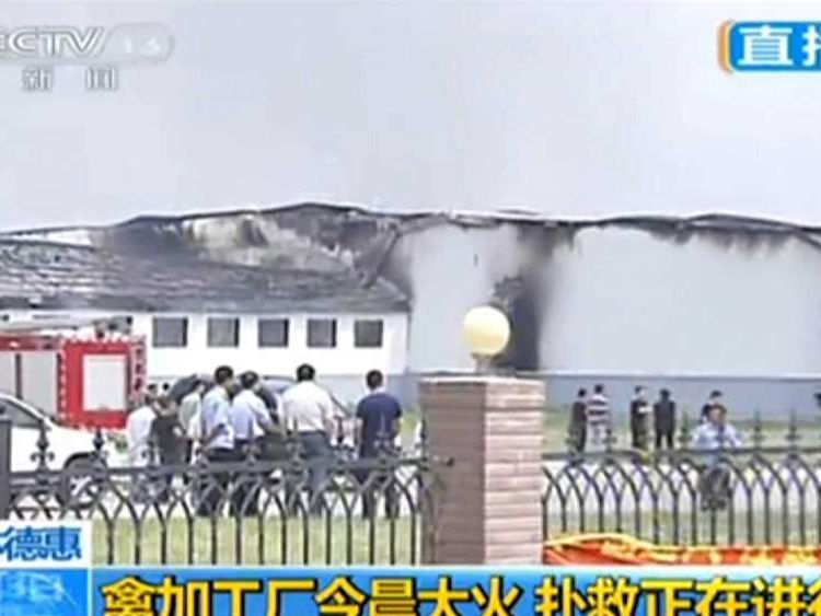 China chicken processing plant fire