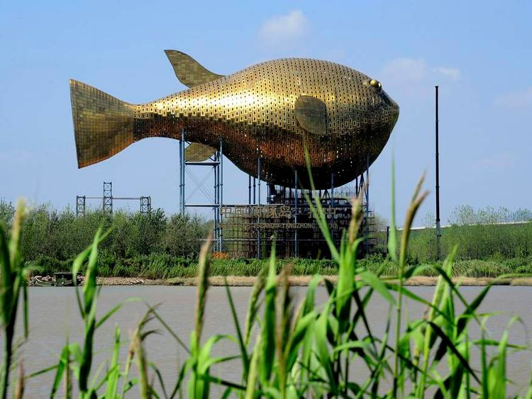 Viewing tower in the shape of a giant copper puffer fish is seen under construction on the banks of a river in Yangzhong county