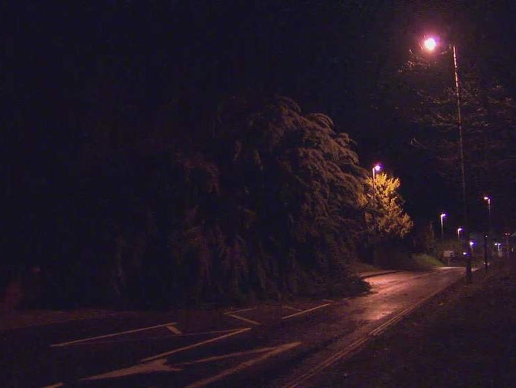 The scene of a fallen tree in Exeter, Devon, where a woman died during bad weather.