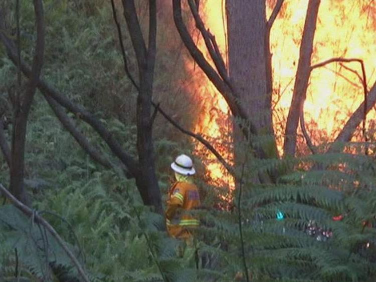 A firefighter tackles a bushfire in Australia.