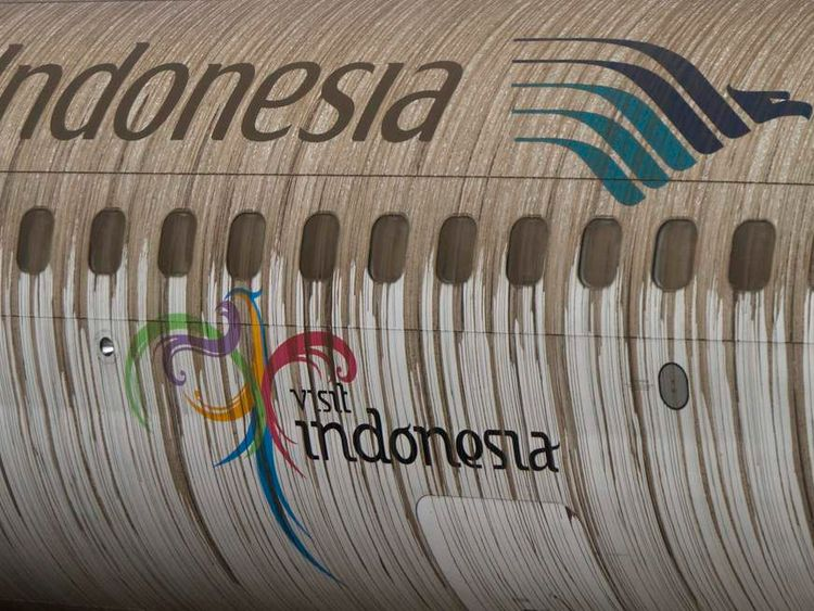 Ash from Mount Kelud covers a Garuda Indonesia airplane at Adi Sucipto airport in Yogyakarta