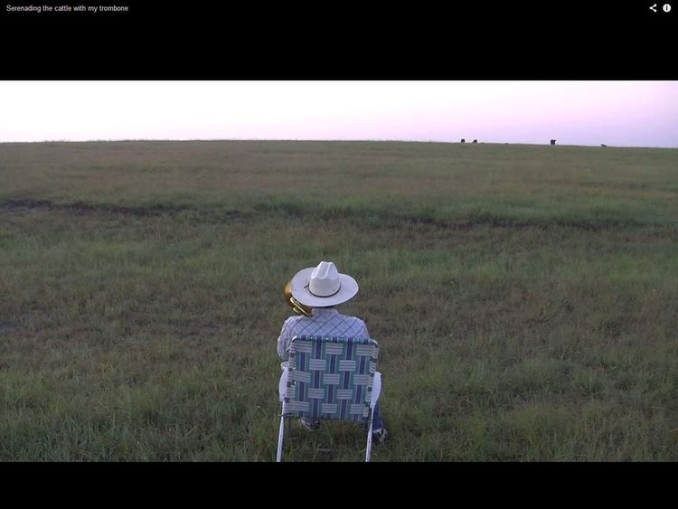 The farmer plays and the cows appear on the horizon