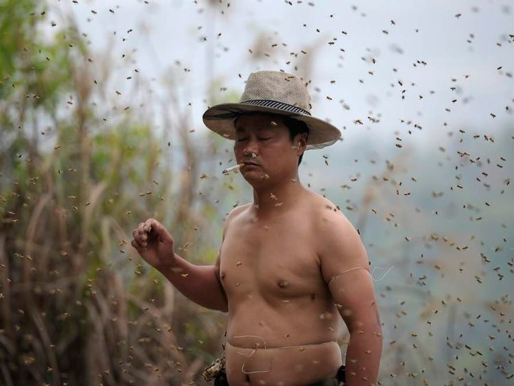 She Ping smokes cigarette as he gets ready for an attempt to cover his body with bees in Chongqing municipality.