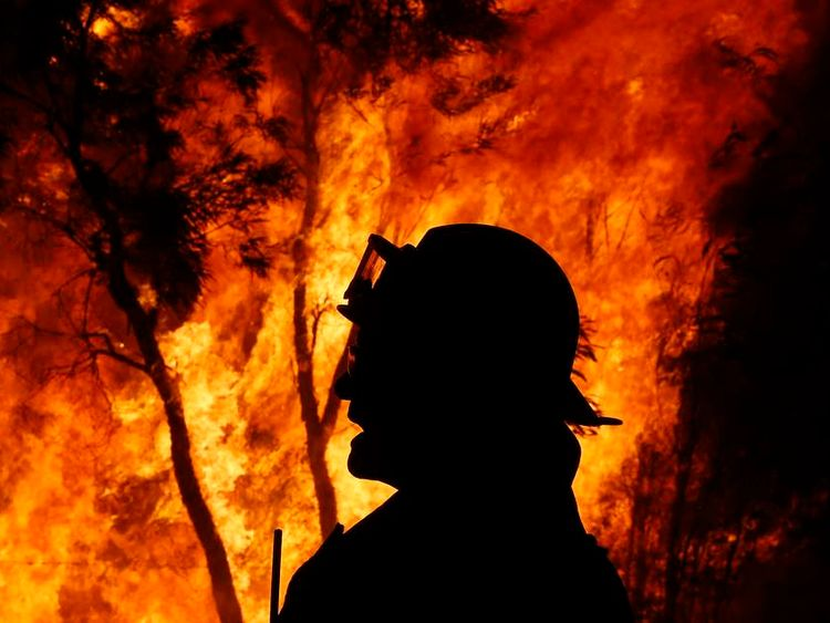 A firefighter gives instructions near a bushfire at the Windsor Downs Nature Reserve, near Sydney