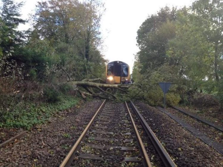 The line between Farnham and Alton blocked by a fallen tree. Pic: South West Trains