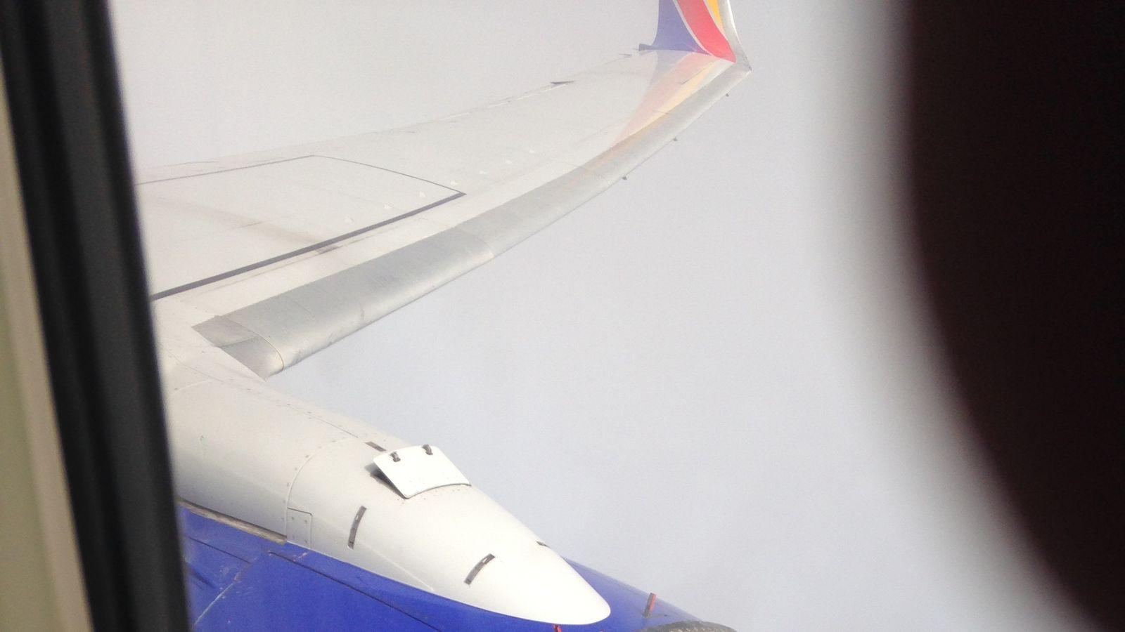 Если в турбину самолета попадет птица что будет