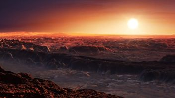 An artist impression of Proxima b's surface