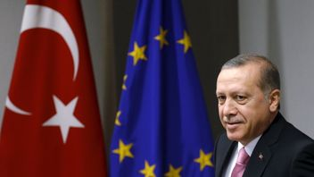 The prospect of Turkey joining the EU was a contentious issue in Britain during the EU referendum debate
