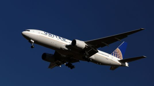 United Airlines confirmed the pilots had been removed from their duties