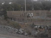 Dozens were left stranded on a fence on the border of the Spanish enclave Ceuta Pic: @M_ALI_LEMAGUE