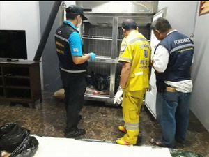 Dismembered body hidden in Bangkok freezer for three years